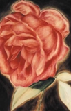 "oil on canvas 3""x4"" Rose"