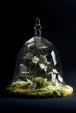 Insect Bell Jar